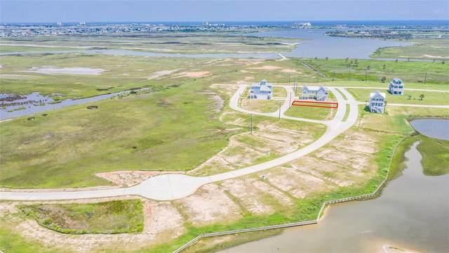1611 Bay Pointe Drive, Galveston, TX 77554 (MLS #42075342) :: My BCS Home Real Estate Group