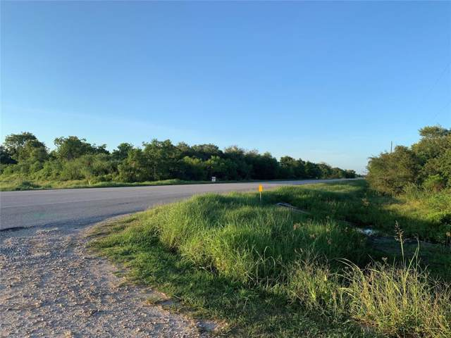 000 Highway 35 Highway, Liverpool, TX 77577 (MLS #42092861) :: The Sold By Valdez Team