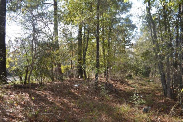 TBD Hwy 105, Batson, TX 77519 (MLS #42128810) :: Fairwater Westmont Real Estate