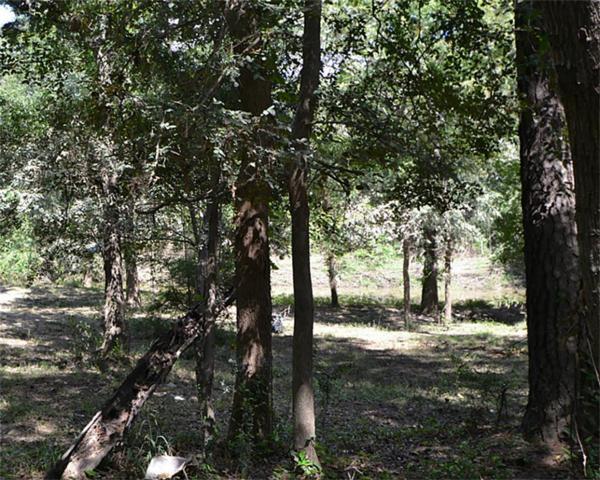 1313 Woodvine, Friendswood, TX 77546 (MLS #42164734) :: Caskey Realty