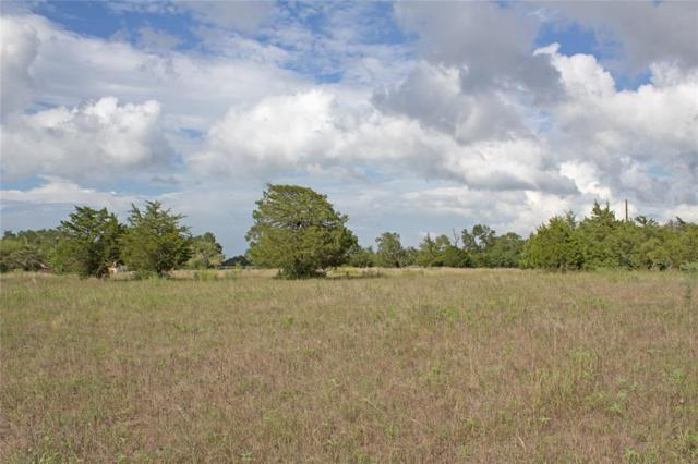 9751 Wolf Creek Road, Brenham, TX 77833 (MLS #42172206) :: The Heyl Group at Keller Williams