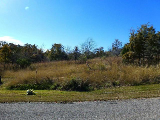 53 Piping Rock Place, Coldspring, TX 77331 (MLS #42176671) :: Ellison Real Estate Team