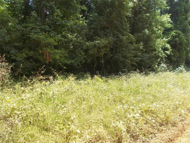 TBD The Ole Barney Road, Livingston, TX 77351 (MLS #42216130) :: The SOLD by George Team