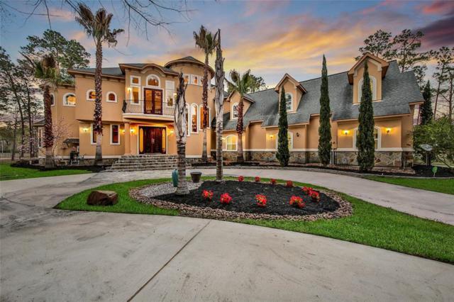 28502 Benders Dock Court, Spring, TX 77386 (MLS #42292737) :: Giorgi Real Estate Group