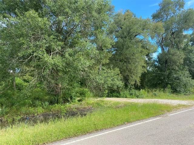 0 County Road 684B, Sweeny, TX 77480 (MLS #42337976) :: The Bly Team