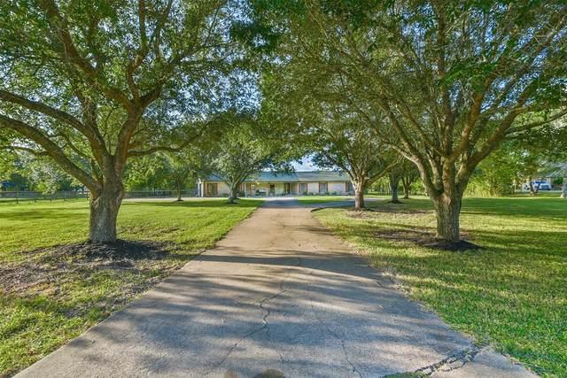 1412 Falling Leaf Drive, Friendswood, TX 77546 (MLS #42341179) :: Christy Buck Team