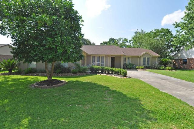 1114 W Castlewood Avenue, Friendswood, TX 77546 (MLS #42341959) :: The SOLD by George Team
