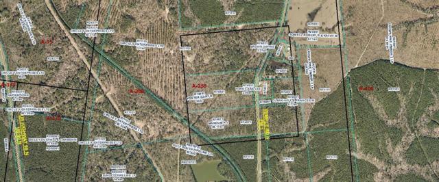 2935 Temple Rd N Road N, Pineland, TX 75968 (MLS #42387443) :: Texas Home Shop Realty