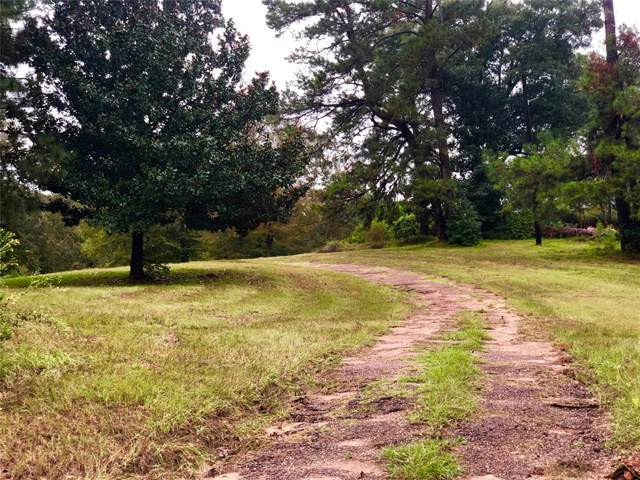 1300 Us Highway 69 S, Woodville, TX 75979 (MLS #42437365) :: Giorgi Real Estate Group