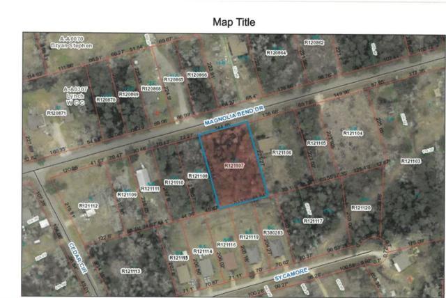 11672 Magnolia Bend, Conroe, TX 77301 (MLS #42572741) :: The Home Branch