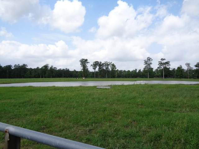 6979 Jordan Road, Kountze, TX 77625 (MLS #42573700) :: The Home Branch