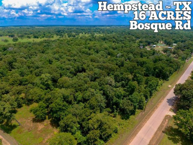 Tract 18-8 Bosque Road, Hempstead, TX 77445 (MLS #42575016) :: The Heyl Group at Keller Williams