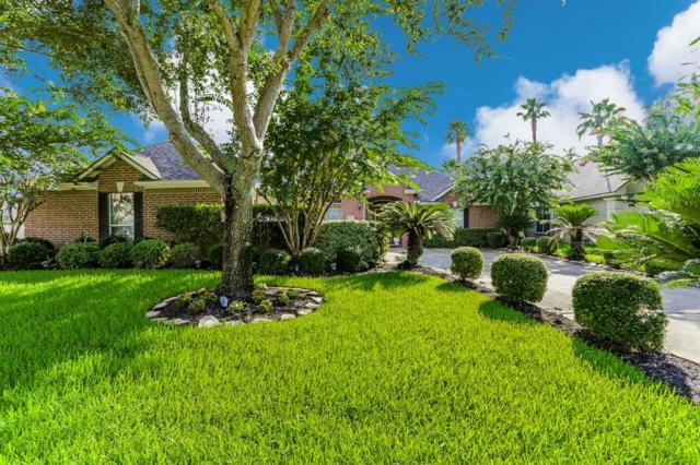 6810 N Gold River Circle, Missouri City, TX 77459 (MLS #42629636) :: Texas Home Shop Realty