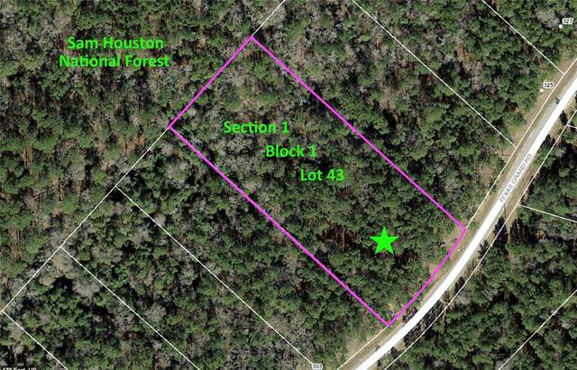 1-1-43 Texas Grand Road, Huntsville, TX 77340 (MLS #42656491) :: TEXdot Realtors, Inc.