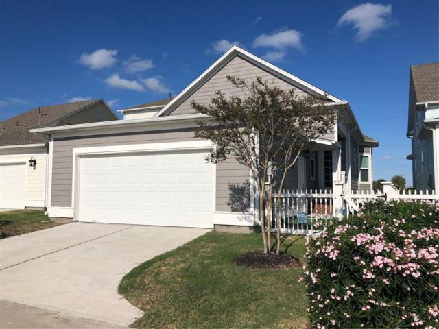 11 Sunrise Row, Galveston, TX 77554 (MLS #42710171) :: Magnolia Realty