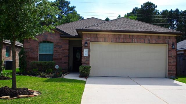 18719 Crystal Cascade Lane, Spring, TX 77379 (MLS #42739845) :: See Tim Sell