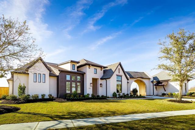 7343 Palmetto Springs Trail, Katy, TX 77493 (MLS #42817971) :: Texas Home Shop Realty