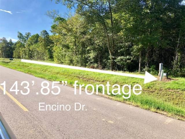 13 Road 660, Dayton, TX 77535 (MLS #4288059) :: Phyllis Foster Real Estate