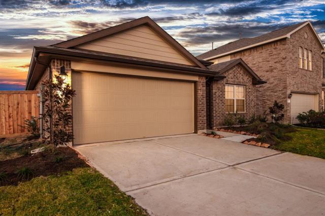 12705 South Shore Drive, Texas City, TX 77591 (MLS #42979504) :: Texas Home Shop Realty
