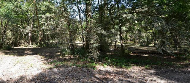 1309 Woodvine, Friendswood, TX 77546 (MLS #4302901) :: Caskey Realty