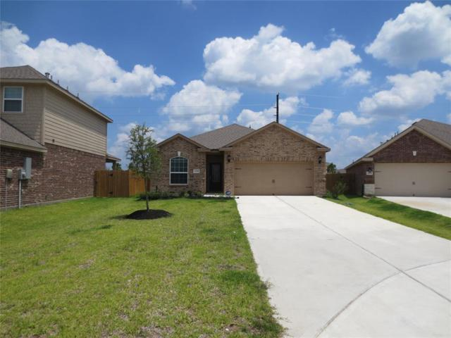 20658 Stout Drive, Hockley, TX 77447 (MLS #43055154) :: Christy Buck Team