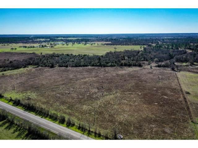 32 Acres Fm 1696 West, Huntsville, TX 77320 (MLS #43066483) :: Ellison Real Estate Team
