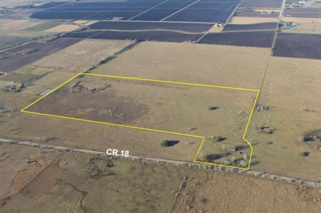 2235 County Road 18, Damon, TX 77430 (MLS #43095630) :: Giorgi Real Estate Group