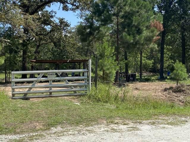25452 Lonestar Boulevard, Waller, TX 77484 (MLS #43100525) :: Homemax Properties