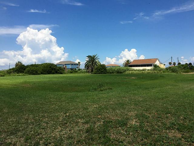 2113 Galveston, Port Bolivar, TX 77650 (MLS #43105418) :: Texas Home Shop Realty