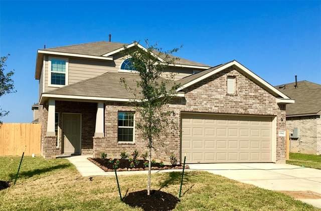 2009 Cedar Tree Court Drive, Conroe, TX 77301 (MLS #43140837) :: Ellison Real Estate Team
