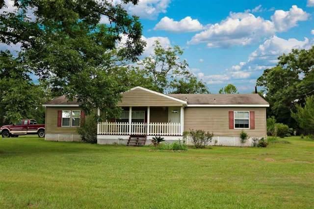 794 County Road 1500, Newton, TX 75966 (MLS #43171105) :: The Queen Team