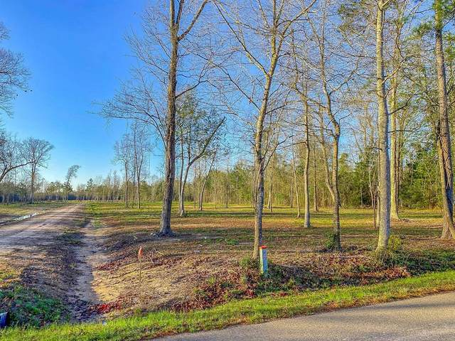 Tr B County Road 2216, Cleveland, TX 77327 (MLS #43244354) :: The SOLD by George Team