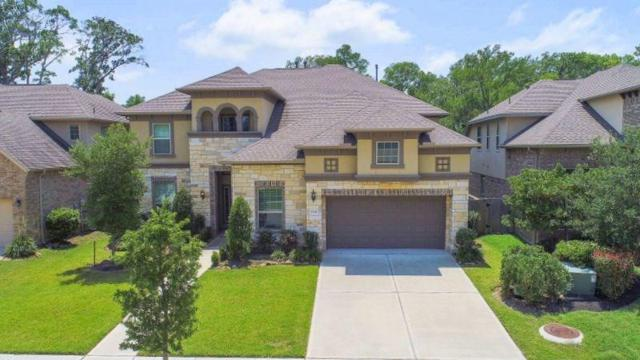 5519 Mangrove Creek Lane, Sugar Land, TX 77479 (MLS #43249330) :: The Queen Team