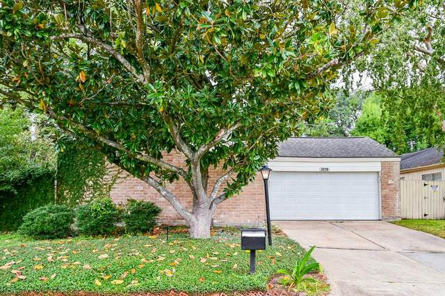 3115 Ashford Arbor Drive, Houston, TX 77082 (MLS #432672) :: Michele Harmon Team