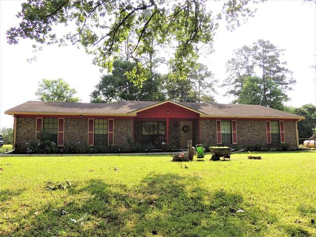 10336 County Road 351, Plantersville, TX 77363 (MLS #43329102) :: The SOLD by George Team