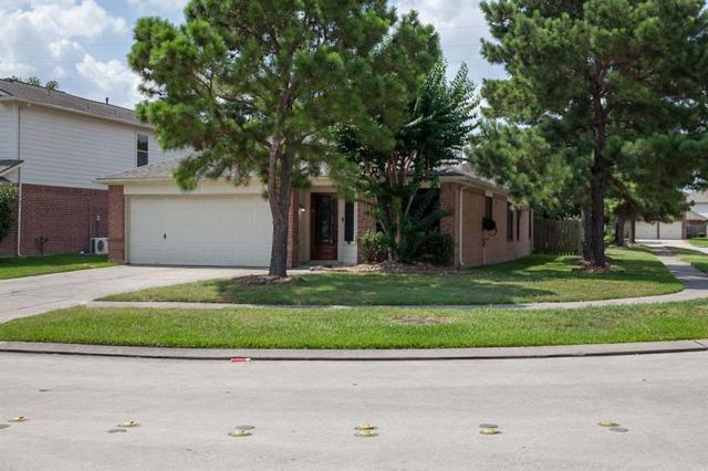 11915 Ezekiel Drive, Tomball, TX 77375 (MLS #43329916) :: The Parodi Team at Realty Associates