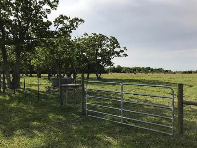 0000 Eagle Road, Anahuac, TX 77514 (MLS #43376689) :: The Queen Team