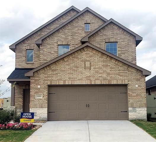 16864 Pink Wintergreen Drive, Conroe, TX 77385 (MLS #43382693) :: Guevara Backman