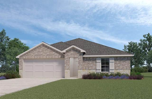 20107 Leaf River Court, New Caney, TX 77357 (MLS #43407950) :: The Bly Team