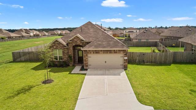 23018 Black Mountain Ash Court, Tomball, TX 77375 (MLS #43462275) :: The Parodi Team at Realty Associates