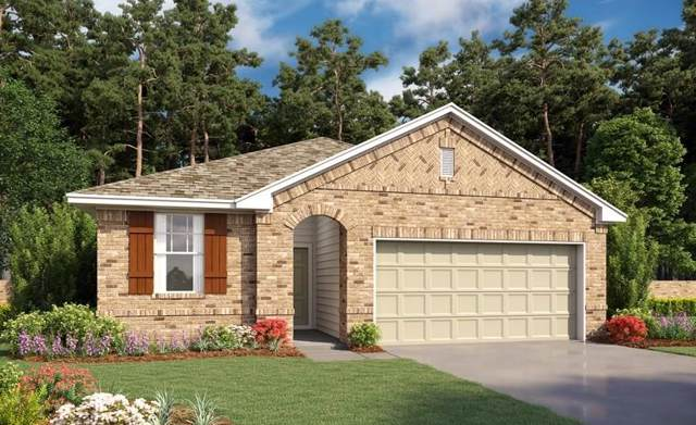 13415 Rain Lily Drive, Texas City, TX 77568 (MLS #43504410) :: Texas Home Shop Realty