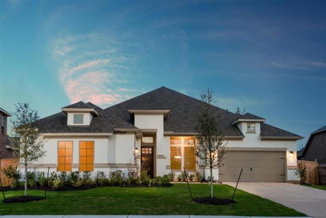 24502 Hollowgate Park Lane, Tomball, TX 77375 (MLS #43555616) :: Lion Realty Group / Exceed Realty