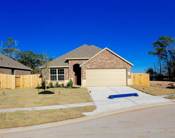 18206 Octavio Frias Trail, Houston, TX 77044 (MLS #43577208) :: The Heyl Group at Keller Williams