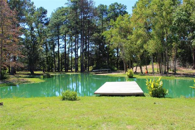 284 County Road 2292, Cleveland, TX 77327 (MLS #43597393) :: The Home Branch