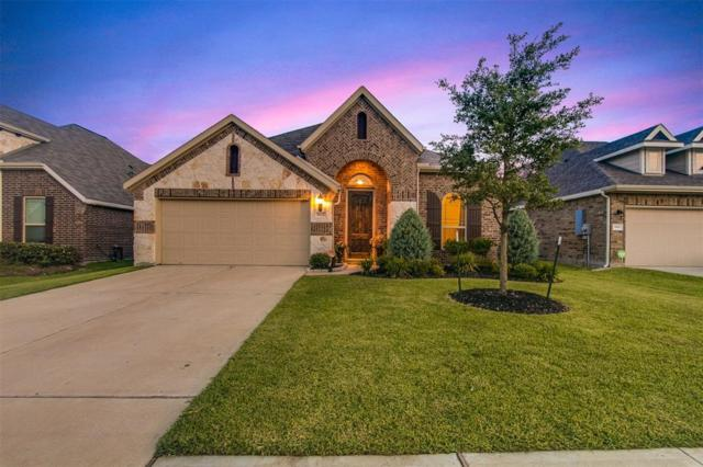 1822 Dylan Lane, Deer Park, TX 77536 (MLS #43605525) :: The SOLD by George Team