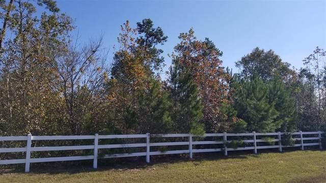 8839 Grand Lake Estates Drive, Montgomery, TX 77316 (MLS #43659812) :: Caskey Realty
