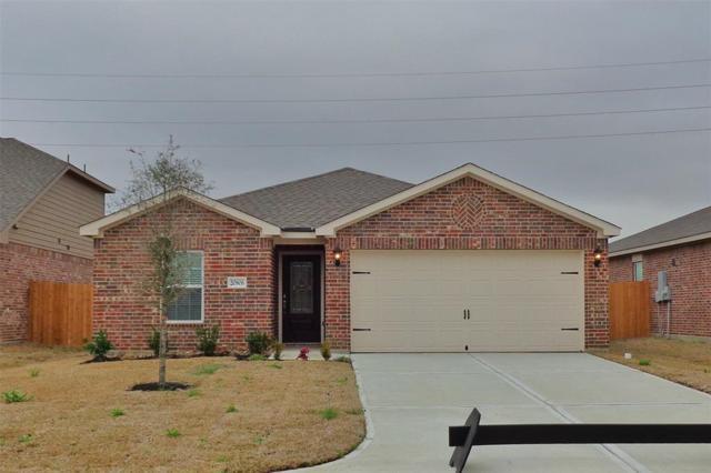 20806 Echo Manor, Hockley, TX 77447 (MLS #43741286) :: Christy Buck Team