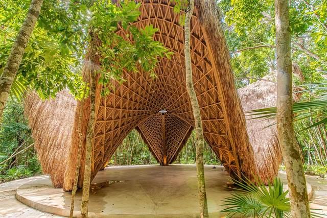0 Residencial Boca Zama Carr #304, Tulum Quintana Roo, TX 77730 (MLS #43743196) :: Connect Realty