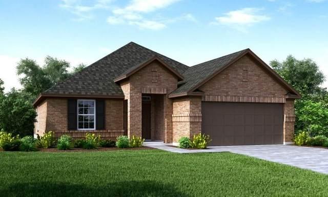 8806 Mugwort Drive, Rosenberg, TX 77469 (MLS #4380927) :: The SOLD by George Team