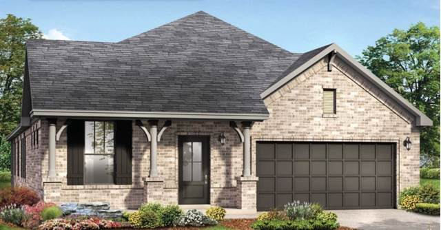 31215 Gulf Cypress Lane, Hockley, TX 77447 (MLS #43820835) :: Texas Home Shop Realty